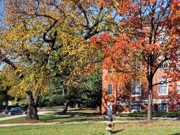 Университет осенью