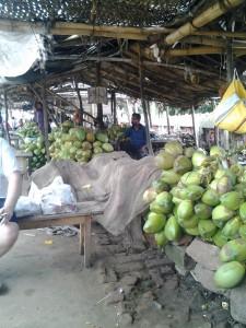 фото 8 кокосы